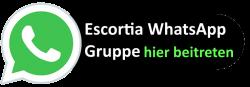 Escort Wien  Whats App  Gruppe
